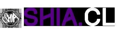 www.shia.cl Cultura Urbana y Hip Hop Chileno